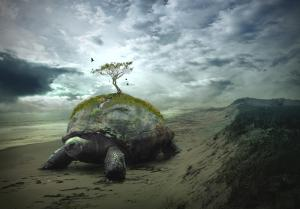 The Creation of Turtle Island